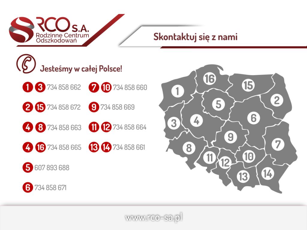 infografika-przedstawiciele-v6
